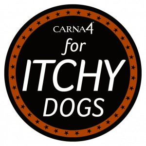 Itchy Dogs sticker